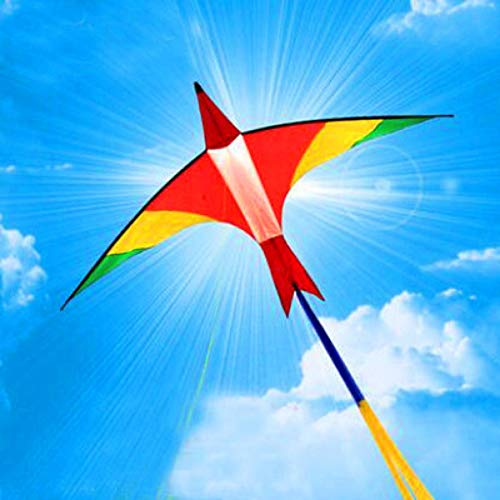 ZSYF Drachen Kite 3M Firebird Große Drachenleine Ripstop Nylon Stoff Drachen Fliegen Rolle Latawiec Kiteboard Windsack