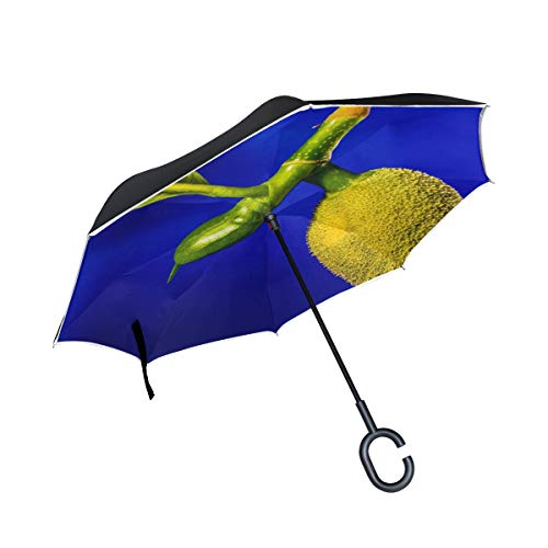 Double Layer Inverted Jack Young Jackfruit Jack Fruit Tropical Close Up Umbrellas Reverse Folding Umbrella Windproof Uv Protection Big Straight Umbrella For Car Rain Outdoor With C-shaped Handle