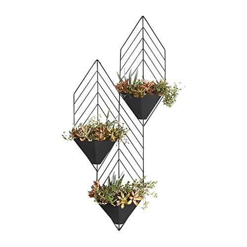 Lisun Nordique en Fer forgé Suspendus Petits Pots de Fleurs Salon tenture Murale Vert tiges d'orchidée Plante Espace Espace Plateau de Fleurs (Color : Orange)