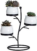 Gepege 3 Pcs Ceramic Succulent Planter Pots - 3 Inch Modern Century Indoor Cactus Container with Metallic Stand and...