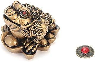 Amazon.es: amuleto suerte