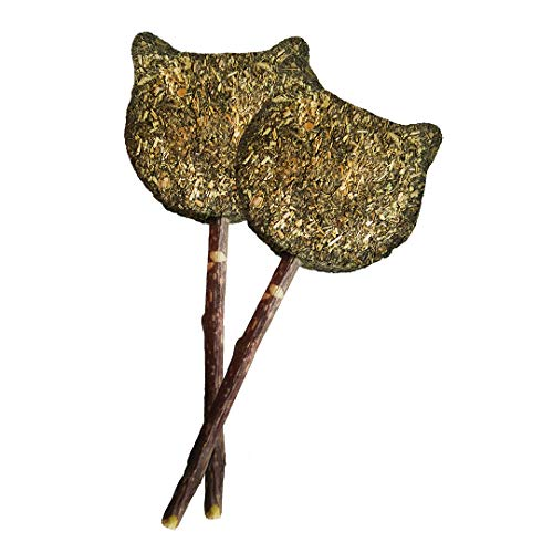 Best Organic Catnip Lollipop Toy for Your Cat 100% Made in USA