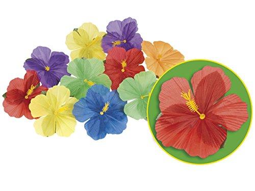 Alsino Fleurs Hibiscus décoratives (Environ 24 pièces) pour Une décoration hawaïenne, Tahiti et Tropicale (52513) Ambiance Beach Party soirée Anniversaire Mariage idée Original Sympa