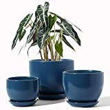 LE TAUCI Plant Pot with Drainage Hole and Saucer, 6.3+5.3+4.3 Inch Ceramic Planter Pots, Small to Large Sized, Flower Pot for Indoor Garden Decor, Set of 3, Navy (Plants not Included)