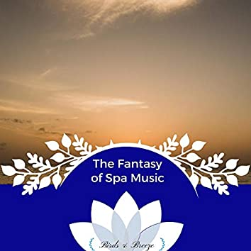 The Fantasy Of Spa Music