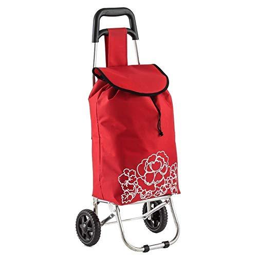 DSENIW QIDOFAN - Carro portátil para equipaje, carro, carro, barra de acero, plegable, tamaño: 38 x 26 x 85 cm.