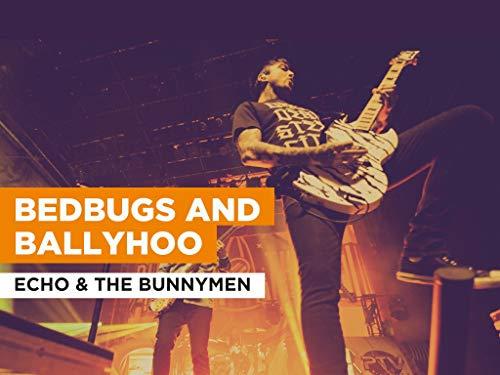 Bedbugs And Ballyhoo im Stil von Echo & The Bunnymen