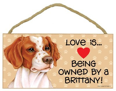 ''Love Is Being Owned by A Brittany' Wooden Sign