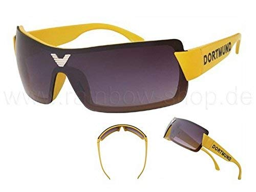 Viper Sonnenbrille Dortmund Bikerbrille UV 400