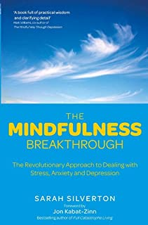 The Mindfulness Breakthrough: The Revolutionary Approach to Dealing with Stress, Anxiety and Depression (English Edition)