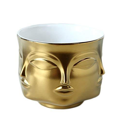 Poitemsic Ceramic Gold Face Planter Head Face Vase Home Decoration Succulent Cactus Indoor Plant Pot Versatility Designs