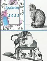 Agenda 2022: Semainier, planificateur hebdomadaire, format A5 17x22 cm, 112 pages sur papier crème 90g/m², Chat, chaton