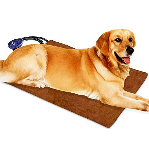 Cuscino riscaldante per animali domestici per gatti e Cani. BEROCIA: Scaldino regolabile per animali domestici con temperatura regolabile e resistente alla masticazione (Extra Large 65 x 40 cm)