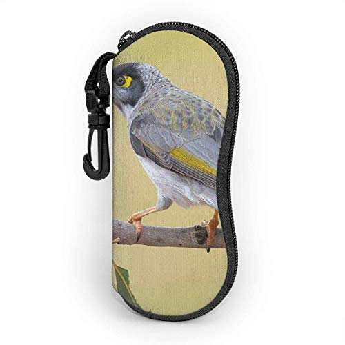 AOOEDM Sunglasses Case With Carabiner,Portable Glasses Soft Case Bird Pink Flowers Twigs Spring