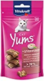 VITAKRAFT Cat YUMS Pate, 1 x 40 g, 40