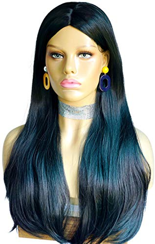 Drag Queen Wig Long Straight Black Wigs Morticia wig costume addams family Synthetic Wigs black straight wigs Heat friendly fiber 28inches for Women (Natural Black)