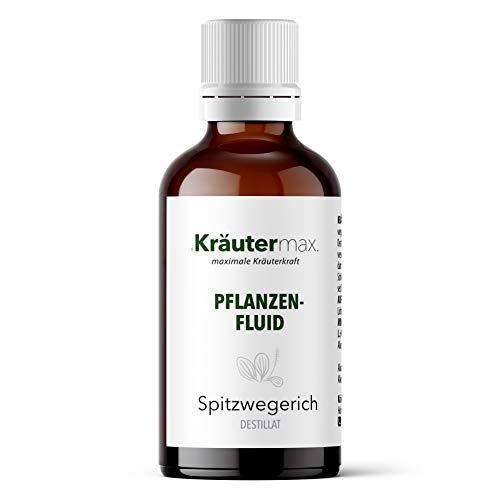 Spitzwegerich Tropfen Pflanzen Extrakt Flüssig 1 x 50 ml
