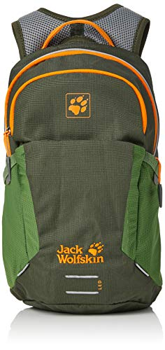 Jack Wolfskin Kinder Kids Moab Jam Rucksack, Antique Green, ONE Size