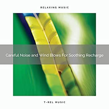 Careful Noise and Wind Blows For Soothing Recharge