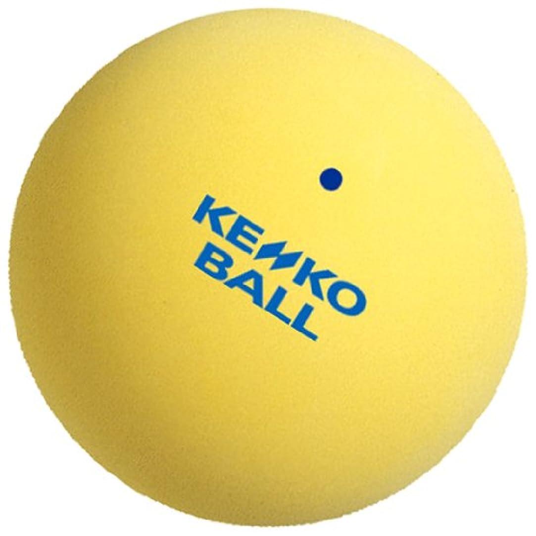 印象リマークシネウィナガセケンコー(KENKO) ソフトテニスボール スタンダード イエロー 1ダース(12個) TSSY-V