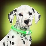 PetSol LED Collar Perro Collar de Seguridad LED Recargable Ultra Luminoso para su Mascota batería de Litio Recargable Mayor Visibilidad y Seguridad Talla única para Todos los Perros y Gatos (Verde)