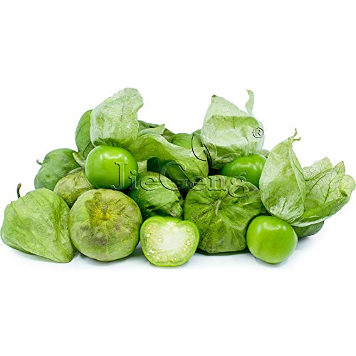 Pinkdose Grüne Tomatillo-Bonsai * 1 Paket 10 * Physalis ixocarpa * bis -ma-TEE-yo * Jamberries * Schalenkirschen * Mexikanische Tomaten: 3 Packet