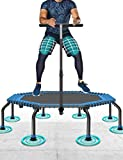 50' Cama Elstica MAX. Carga 250 Libras Silencioso Fcil Instalacin Plegable Fitness Trampolin para Nios Adulto Exterior Jumping