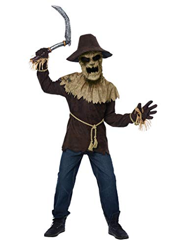 California Costumes Boys Wicked Scarecrow Child Costume