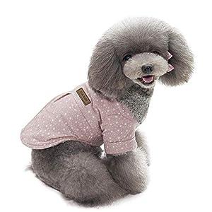 Fathoit Winter Hoodie De Chien Sweater Warm Shirt Manteau Chien Vetement Chiot Chiens VêTements,Pet Dog VêTements d'hiver Chauds Chiot Chats Chandail VêTements Little Star Point Manteau