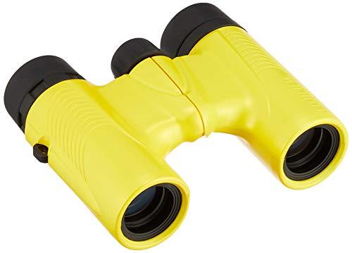 Fujifilm Fujinon KF 6x21H gelb