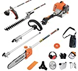 5. PROYAMA 26cc 5 in 1 Trimming Tools, Multi Functional Sets Gas Hedge Trimmer, String Trimmer, Brush Cutter, Pole Chainsaw Pruner with Extension Pole