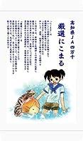 【精米】お米の専門店スズノブ千葉店 高知県 JA高知県四万十厳選 にこまる 白米 5kg 令和1年産