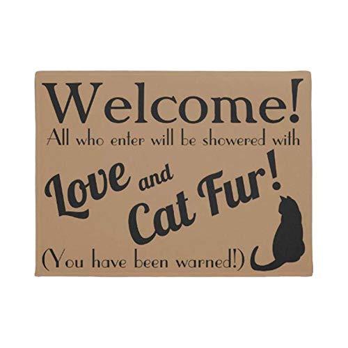LDHHZ Personalisieren Sie Liebe & Katzenfell Lustige Begrüßung Fußmatte Home Decoration Eintrag rutschfeste Türmatte Gummi Waschbarer Bodenteppich 40x60cm