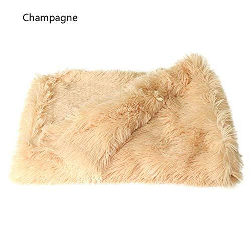 Zachte huisdier deken Fluffy hondenkat bed matten diep dunne afdekkingen voor kleine grote honden vaste kat matras, 78x54cm 8bayfa (color : champagne, size: 78x54cm)