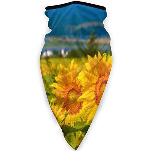 NA FABandeau décoratif de décoration, écharpe de Visage de Formes géométriques de Fleur de Rose d'or, Bandeau de Camouflage 12-en-1 pour Hommes-Femmes, 24X52Cm
