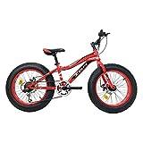 IBK Bici Bicicletta 20