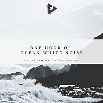 1 Hour of Ocean White Noise
