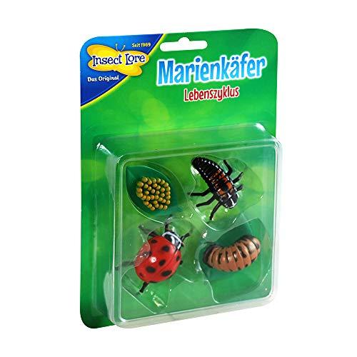 HCM Kinzel 48143 Insect Lore-Lebenszyklus Marienkäfer aus Kunststoff, bunt