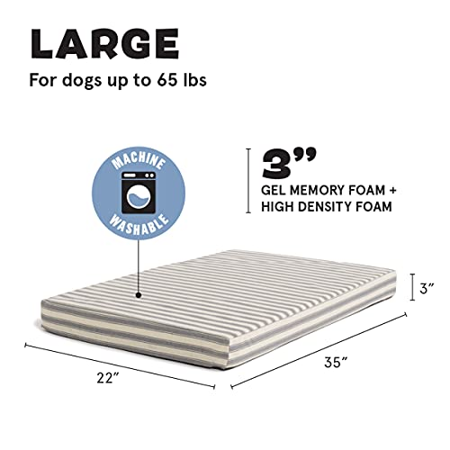 Product Image 2: Barkbox Memory Foam Platform Dog Bed