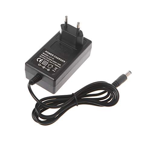 PENG Mini Cargador de Scooter eléctrico Carga de energía Inteligente 24V 500mA Enchufe EU/US/UK