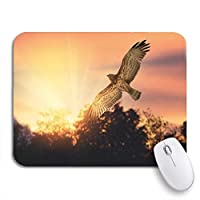 ROSECNY 可愛いマウスパッド ノートブックマウスマット用のノンスリップラバーバッキングコンピュータのマウスパッドを横切って飛ぶ猛禽類の短いつま先のヘビワシ
