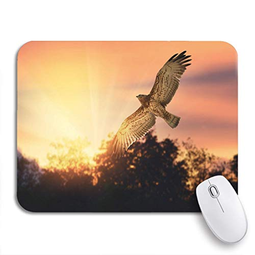 """MIGAGA Gaming Mouse Pad Bird of Prey Short Toed Snake Eagle Flying Across 9.5""""x7.9"""" Nonslip Rubber Backing Computer Mousepad for Notebooks Mouse Mats"""