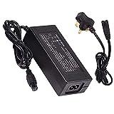 BOYUYO Cargador de batería de Litio para Scooter eléctrico/Hoverboard,...
