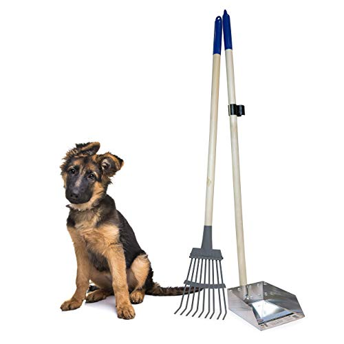 heavy duty pooper scooper for big dogs