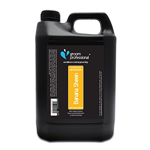 Groom Professional Banana Sheen Shampoo 4 Litre