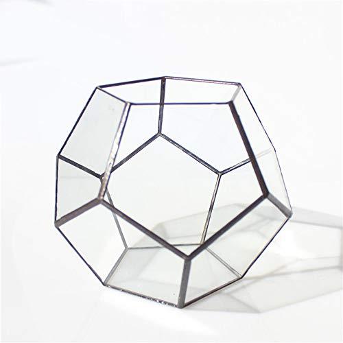 MINGZE Pentagon Dodecaedro geométrico terrario, suculenta terrario, Cristal Transparente Planta Cactus suculentas Maceta (17.5 * 17.5 * 15CM, Negro Lata)