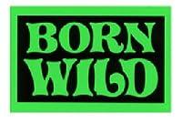 No,419 BORN WILD 輸入 ストリート アメリカン雑貨 ステッカー バイク、車、自転車に! (GREEN)