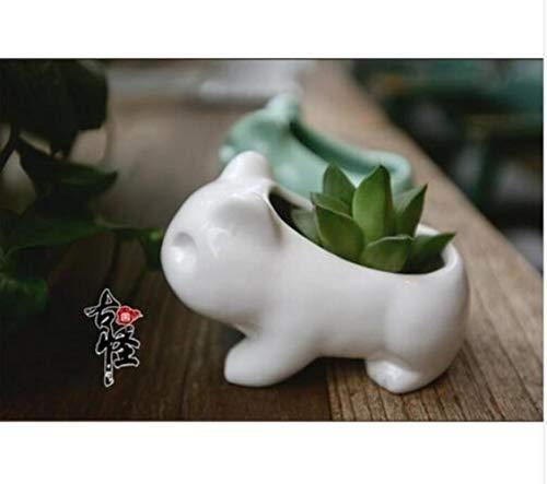 AGGIEYOU 2 stücke Mini Pokemon Keramik blumentopf Pflanzgefäß Weiß Grün Sukkulenten Blume Pflanze Bonsai Topf Loch Niedlich, Weiß
