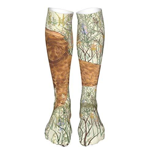 Calcetines de compresión para hombres y mujeres de albaricoque caniche en flores silvestres para almohada calcetines casuales para correr, enfermeras, espinilleras, viajes en vuelo