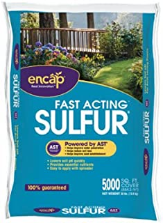 ENCAP 11609-63 Sulfur Plus